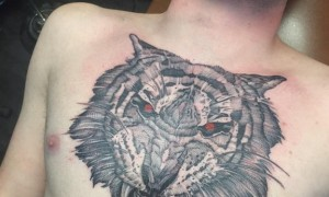 Man full of domineering red eye tiger picture