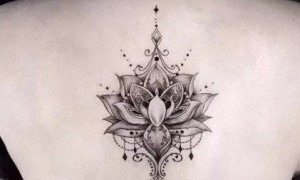 The beautiful lotus floral pattern of the beautiful lotus flower tits