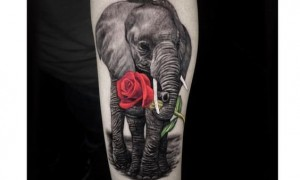 A group of cute fairy elephant tattoo pictures