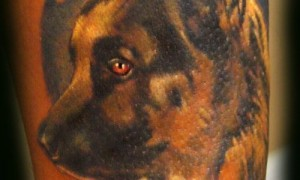 Arm colorful wolf dog portrait tattoo picture